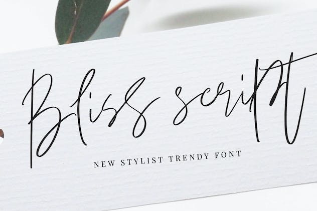 Bliss Script Stylist! - product preview 5