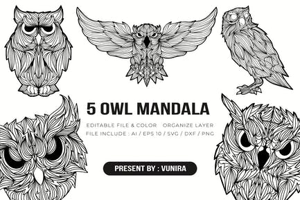 5 Owl Mandala   Design Illustration