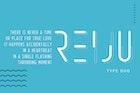 Reiju   Typeface Duo