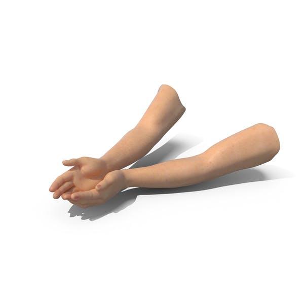 Zwei Hände offen
