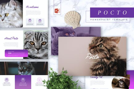 POCTO - Pet Service Powerpoint Template
