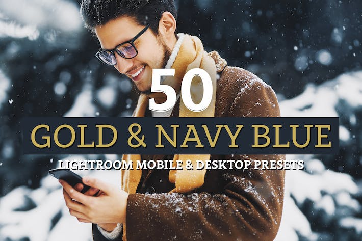 Thumbnail for 50 Gold & Navy Lightroom Presets