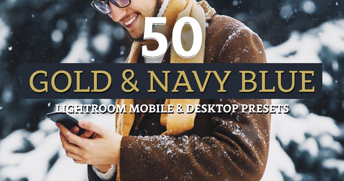 Download 50 Gold & Navy Lightroom Presets by sparklestock
