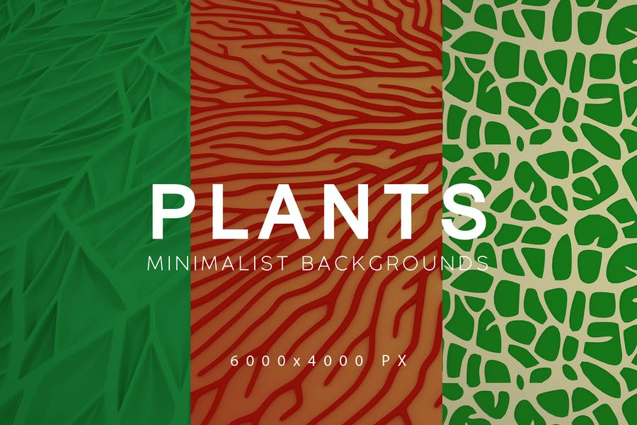 Minimalist Plant Backgrounds