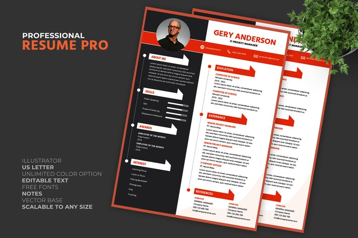 Thumbnail for Manager Resume / CV Template Pro