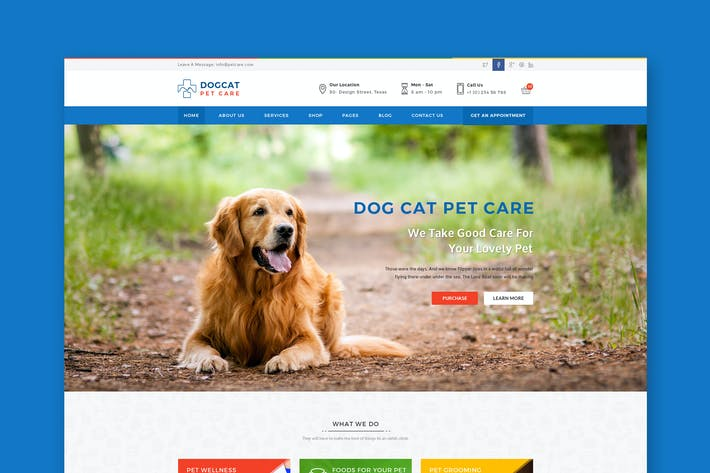 Thumbnail for Pet Care - Veterinary PSD Template