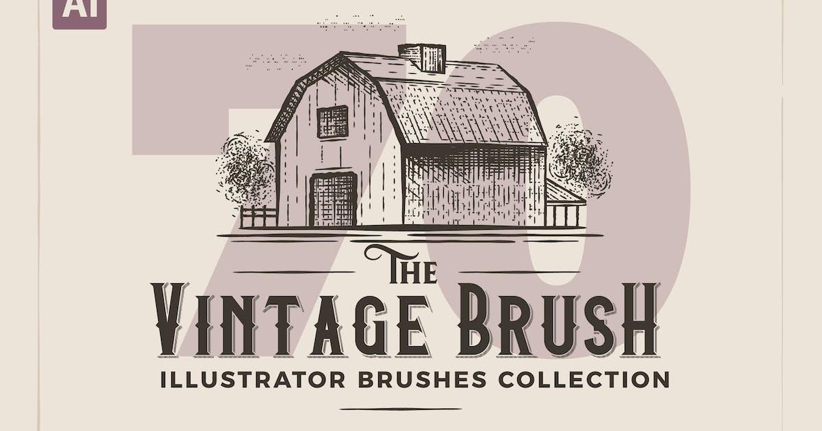 Download Illustrator Vintage Engraving Brushes by andrewtimothy