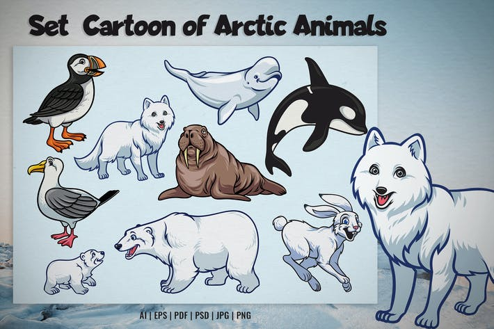 Set Cartoon of Arctic Animal