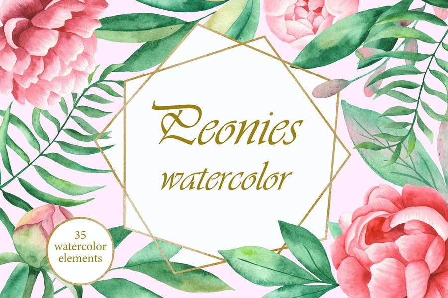 Watercolor Peonies flowers