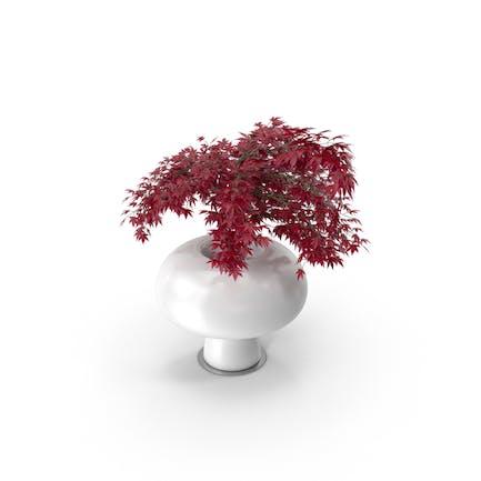 Boyo Vase mit Pflanze