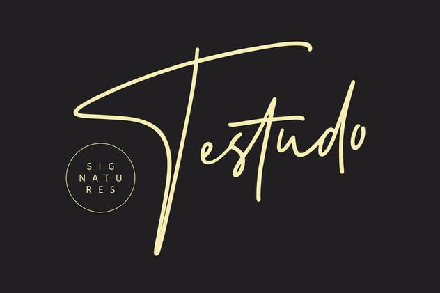 Testudo Signature - product preview 10