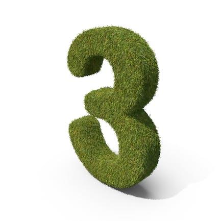Grass Number 3