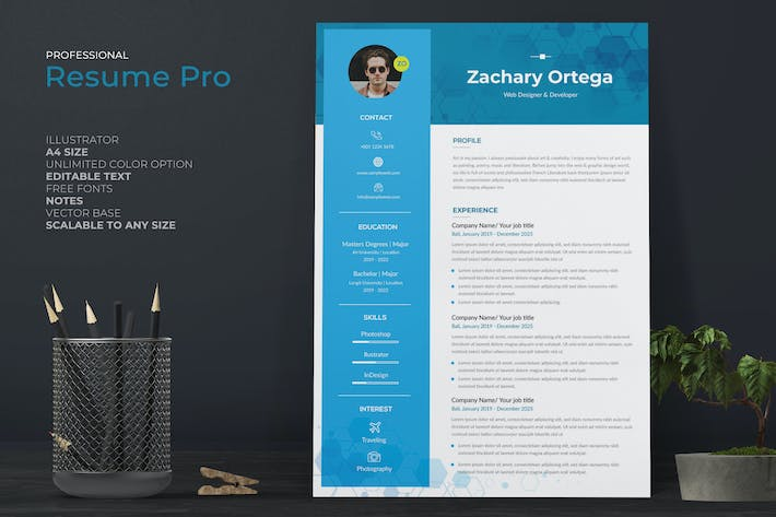 Thumbnail for IT Programmer CV / Resume Template Pro