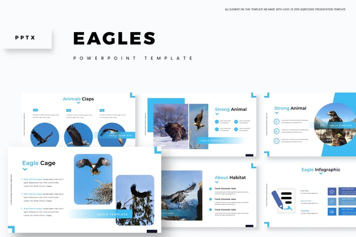 Cover Image For Eagles - Powerpoint Template