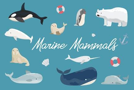 Mammifères marins dessinés à la main