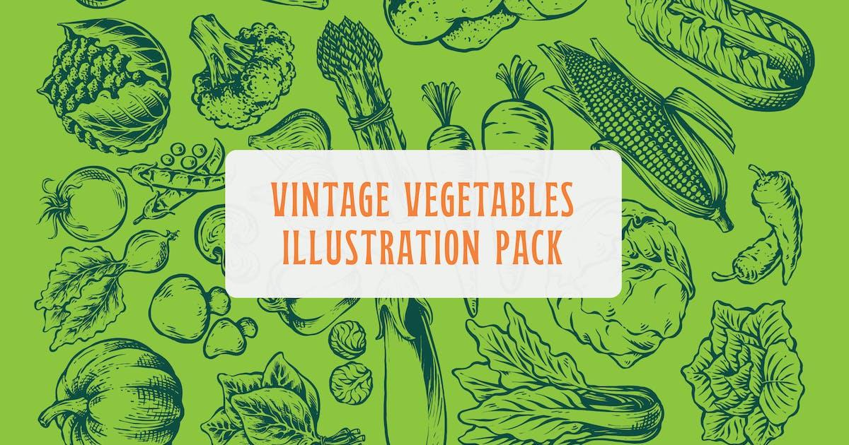 Download Vintage Vegetables Illustration Pack by MartypeCo