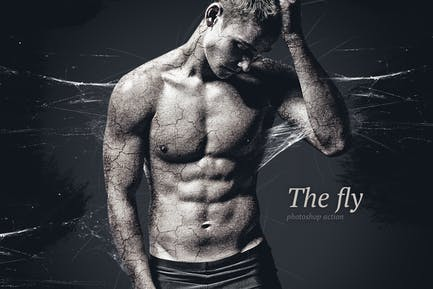 Fly Photoshop Action