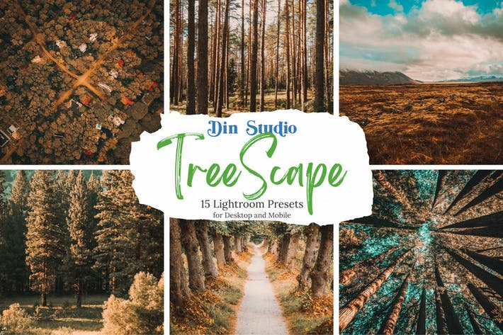 Thumbnail for Tree Scape Lightroom Presets