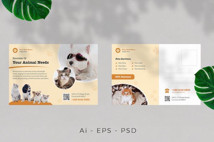 Pet Care / Pet Store Postcard Design