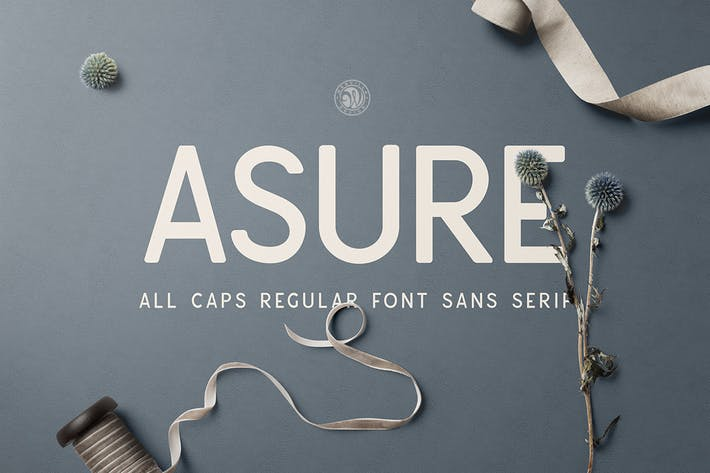 Thumbnail for Asure