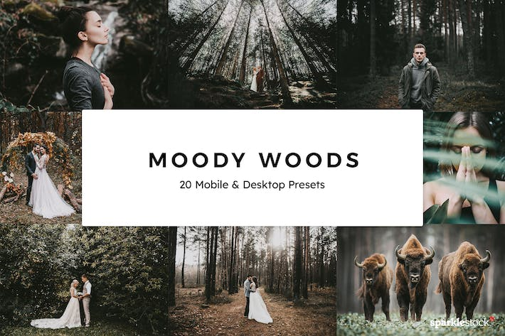 Thumbnail for 20 Moody Woods Lightroom Presets & LUTs