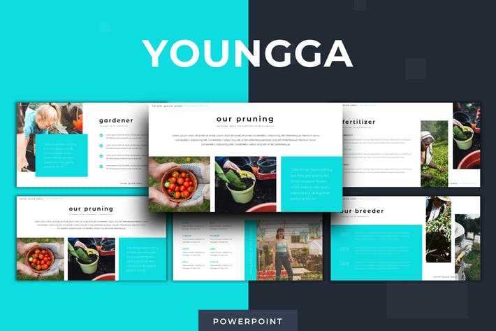 Youngga - Powerpoint Template