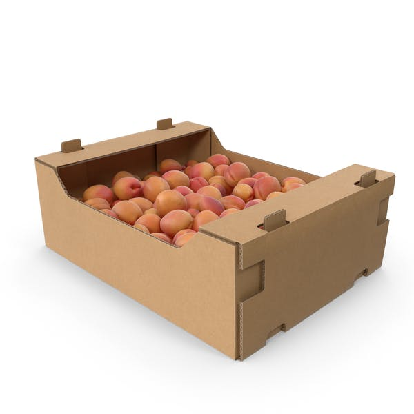 Thumbnail for Cardboard Box Of Apricots