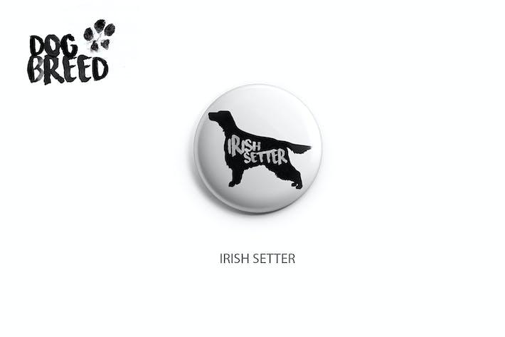 Cover Image For Irish Setter