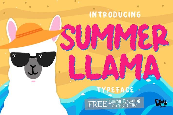 Thumbnail for Summer Llama Typeface - Extra Drawing Llama
