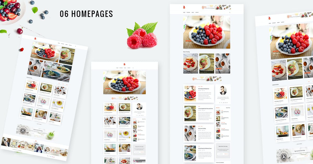 Download Bizi - A WordPress Theme for Food Bloggers by nanoagency
