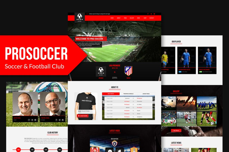 Pro Soccer - Football & Soccer Muse Template