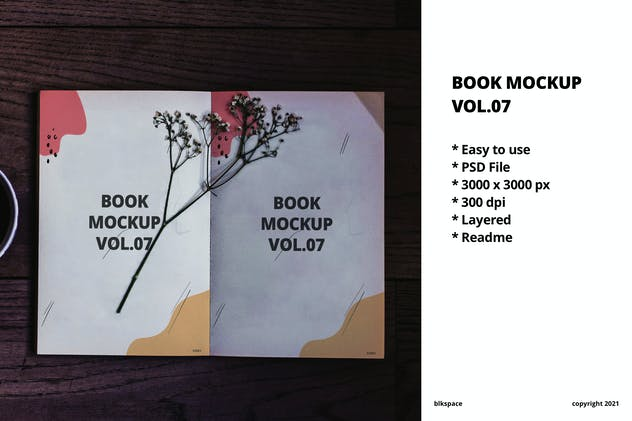 Book Mockup Vol.07