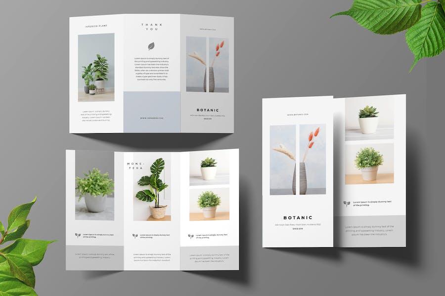 Botanical Trifold Brochure