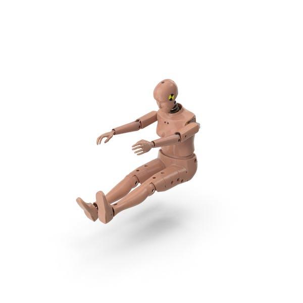 Cover Image for Female Crash Test Dummy