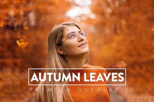 40 Autumn Leaves Overlays