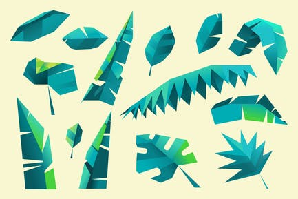 Leaf and foliage polygon collection