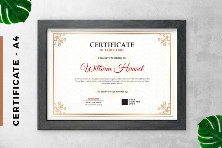 Thumbnail for White Classic Certificate / Diploma Template
