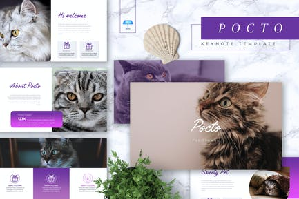 POCTO - Pet Service Keynote Template