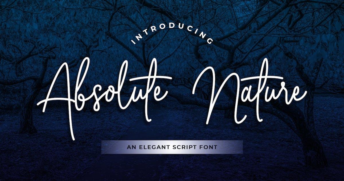 Download Absolute Nature Handwritten Script Font by uicreativenet