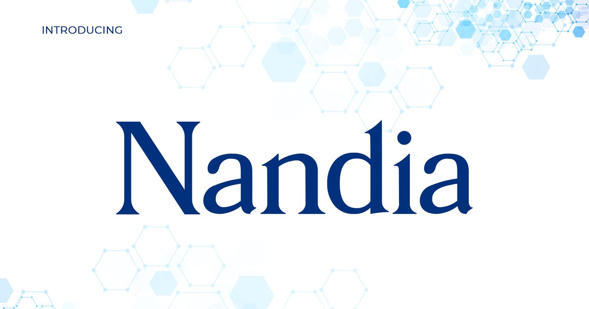 Download Nandi Modern Serif Font by uicreativenet
