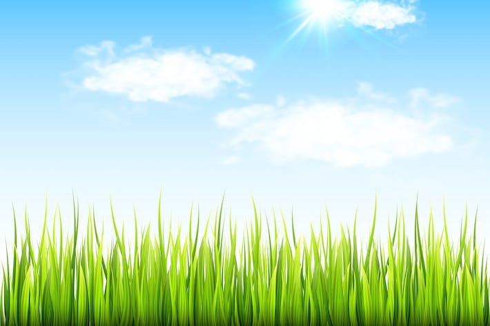 Thumbnail for Spring Background with Green Grass
