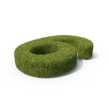 Grass Number 6 Ground