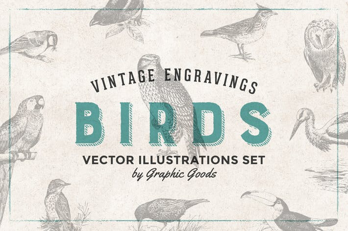 Thumbnail for Birds - Vintage Engraving Illustration Set