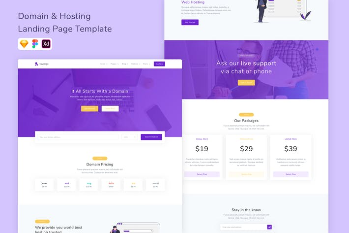 Thumbnail for Domain Hosting Landing Page Template