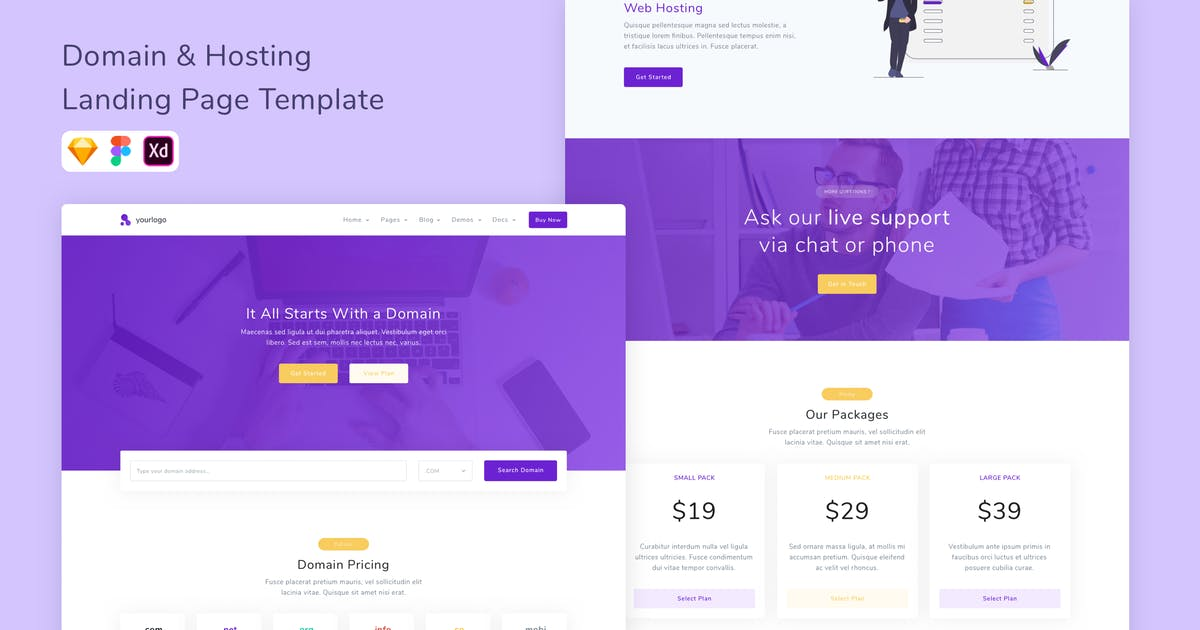 Download Domain Hosting Landing Page Template by betush