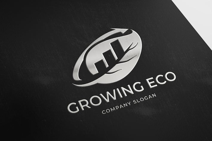 Thumbnail for Growing Eco