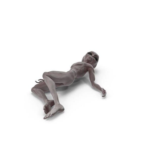 Dead Grey Alien