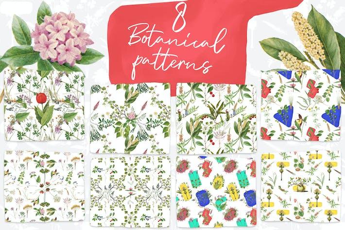Thumbnail for 8 Vintage Botanical Patterns