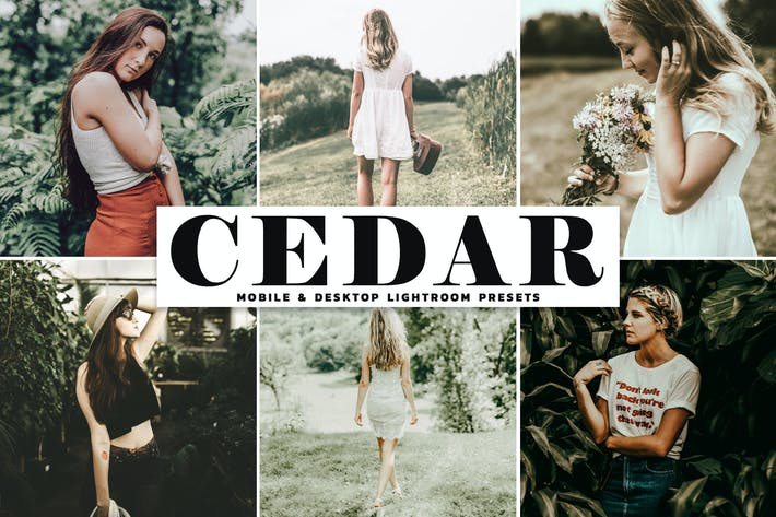 Thumbnail for Cedar Mobile & Desktop Lightroom Presets