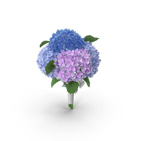 Cover Image for Hydrangea Bouquet